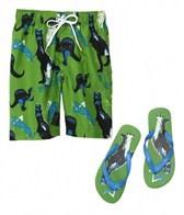 Jump N Splash Boys Dinosaur Swim Trunk w/FREE Flip Flops