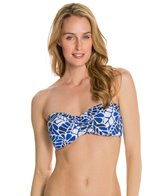 Jag South Pacific Bandeau Bra Top