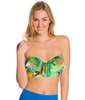 Swim Systems Paradise Island Underwire Bustier Bandeau Bikini Top