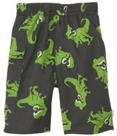 iPlay Boys' Black T-Rex Swim Diaper Pocket Trunks (6mos-4yrs)