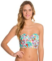 Raisins In Full Flower Beachy Bustier Bikini Top
